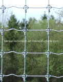Hot-Dipped Galvznied Cattle Fence From Clouded