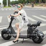 Pocket Bike Motorycle Scooter eléctrico marca fora de estrada