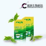 녹차를 체중을 줄이는 강한 효력 자연적인 초본 녹색
