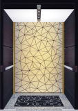 Fujizyの高品質のセリウムの証明の牽引の乗客のエレベーター
