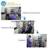 Pianta acquatica del minerale del macchinario di purificazione di osmosi d'inversione