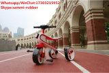 Roller-Fahrrad-Kind-Dreirad des Baby-3-Wheel des Kind-Metalldreirads