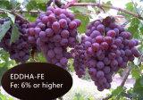 Fe-EDDHA6% Ferro Quelato Ferro orgânico para uso agrícola