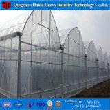 토마토를 위한 다중 경간 또는 단 하나 경간 온실 플레스틱 필름 온실