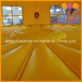 Uitsmijter van Moonwalk van de Verbindingsdraad van de Tijger van de Spelen van het speelgoed de Opblaasbare voor Bevordering (AQ350)