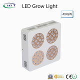 High-Quality 300W Apollo LED расти лампа для использования внутри помещений растениями и цветами