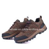 Chaussures de sport d'athlétisme Hotsale Hommes Chaussures de randonnée pédestre Sneaker (FSY1129-13)