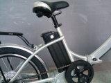 しみのEbike電池が付いている中断グリーン電力のEbikeのすべての折る自転車