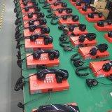 Détenu à la prison de téléphone système téléphonique IP Antivandale Corps en acier Téléphone IP