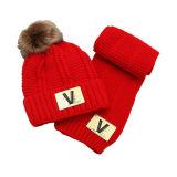 Vastgestelde Sjaal van de Hoed Beanie van de Kinderen van de Baby van jonge geitjes de de Winter Verdraaide (SK415S)
