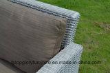 Aluminiumrahmen-im Freien Rattan-Weidensofa-Tisch-gesetzte Möbel