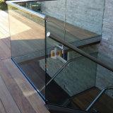 Salle de sports de la sécurité U Channle balustrade en verre avec du bois de la main courante