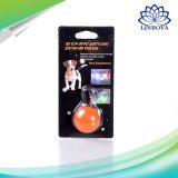 애완견 LED 암흑에서 빛을내는 펀던트 애완 동물 클립-온 안전 빛 애완 동물 펀던트에게 빛난 밝은 빛을내기