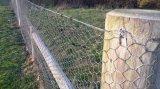 Filetage hexagonal de clôture pour clôture agricole