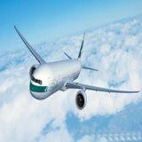 中国からのノルウェーの航空貨物のための最も大きい運送業者
