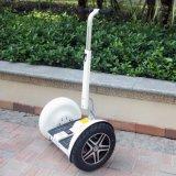 바람 배회자 72V Ninebot 중국 편류 균형 스쿠터