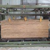 madeira compensada natural do vidoeiro da colagem E1 de 12mm 1220*2440mm