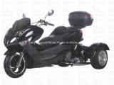 Ход Trike диска EPA Cdi мотоцикла большой винной бутылки 300cc Zhenhua Elec