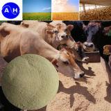 Añadido de la alimentación del polvo de la proteína