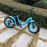 Low Step 20 polegadas Fat Tire E Bike for Kids