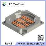 Módulo Duv LED de alta potencia
