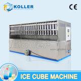 Eficiência elevada de Koller e máquina comestível do cubo de gelo na área quente 6 toneladas