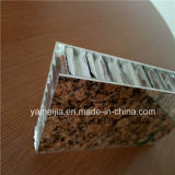 Stone Grain PVDF Revêtue 25mm Aluminium Honeycomb Panneaux de revêtement de mur extérieur Ahp