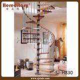 Escada em espiral de vidro de aço inoxidável interior (SJ-3002)