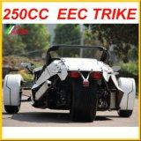De Trike Open tweepersoonsauto Door de EEG goedgekeurde Ztr 250cc
