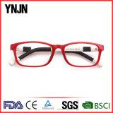 La lunetterie colorée de logo fait sur commande de Ynjn badine les glaces (YJ-G81258)
