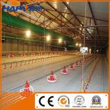 Het geprefabriceerde Landbouwbedrijf van het Gevogelte van de Structuur van het Staal met de Automatische Apparatuur van het Gevogelte