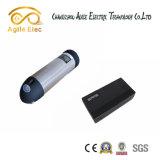 Batterij van de Fles van het Water van de Fiets van de hoge Capaciteit de Elektrische met Lader