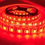 12V IP65는 SMD5050 60LED/M RGB LED 지구 램프를 방수 처리한다