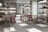 Series-Waterstone del terrazo/azulejo de suelo Finished/rústico mate de la porcelana del ladrillo de la antigüedad del azulejo