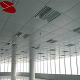 Comitati di parete interna isolati Decoatiove nel disegno del soffitto del salone