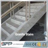 Elegant G853 Koninklijk Wit Graniet dat voor de Binnenlandse Tegel van de Stap van de Vloer in Villa wordt betreden