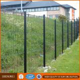 Enduit de PVC clôtures résidentielles de treillis métallique de sécurité