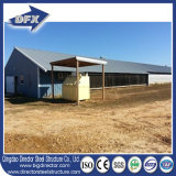 빠른 건축 닭 사용 및 열려있는 옆 가금 집