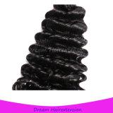 Verwicklung-freies verschüttendes freies lockiges brasilianisches Jungfrau-Haar der Qualitäts-8A