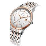 Reloj clásico 72119 del encadenamiento del cristal de zafiro del reloj del Mens del acero inoxidable de Rose