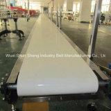 Courroie de convoyage en PVC à haute qualité et résistant aux huiles