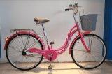 24 /26 Dame Bicycle voor Wijfje
