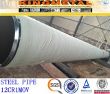 SA213 TP347h tuyau sans soudure en acier inoxydable