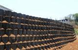 Geocell заполнило с почвой для почвы сохраняя стены и стопа от терять