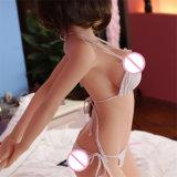 В натуральную величину кукла 165cm секса силикона куклы влюбленности секса с большой грудью