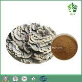 Чисто выдержка гриба облака,  Полисахарид 20%-50%