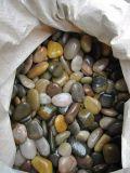 Pietra &Pebble del ciottolo naturale Polished Mixed di colore