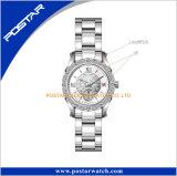 Новейшие Diamond Timepieces Японии Mvmt дамы смотреть на запястье
