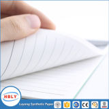 Pierre Bio-Degradable Bloc-notes papier