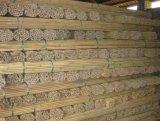 Bastón de bambú natural de la fuente reanudable